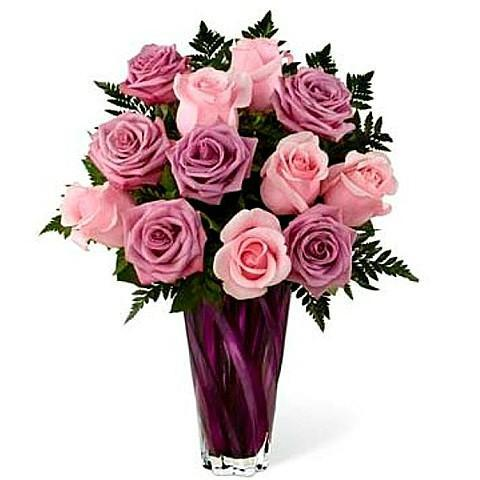 Beauty of Pink & Purple Roses