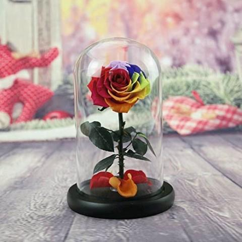 Rainbow Preserved Roses Delivery