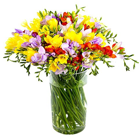 freesia bouquet delivery