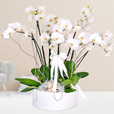 send flowers online flower delivery