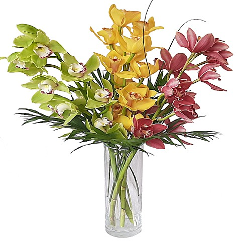 cymbidium orchid bouquet delivery