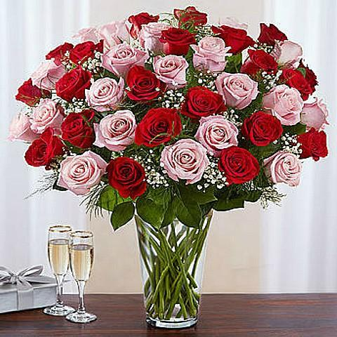 50 Red and pink Roses Bouquet